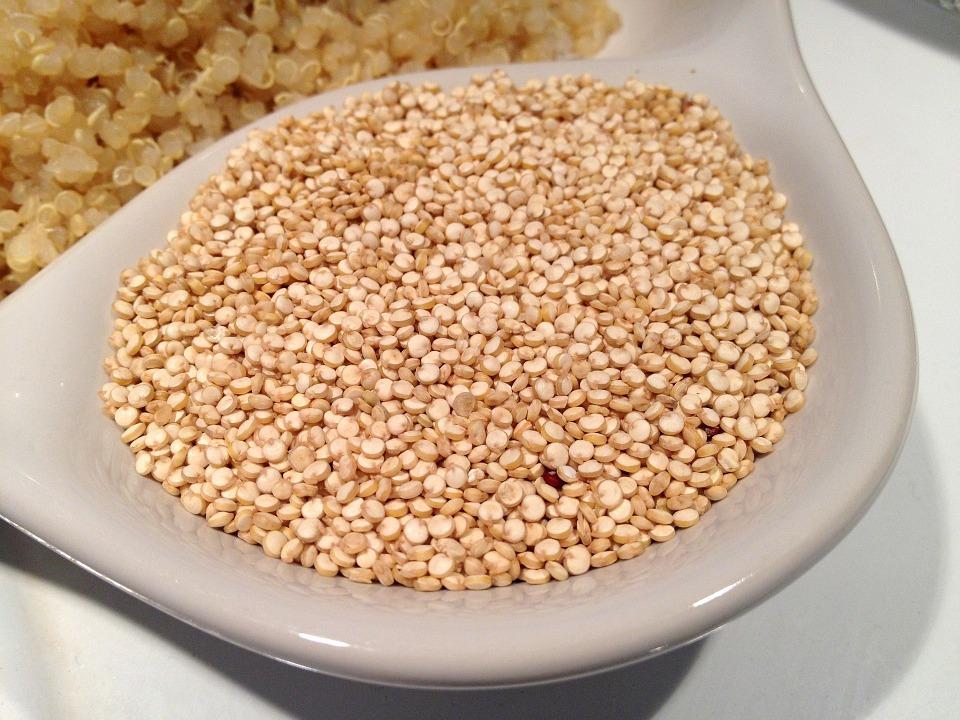 Quinoa si zaslouží pozornost