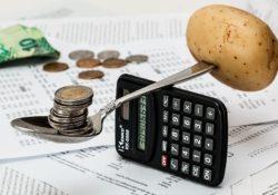 Nižší výdaje domácnosti
