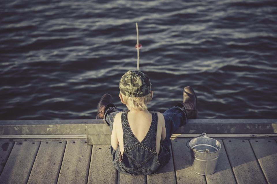 Nejen kapři plují v našich vodách. Jaké další ryby se chytají na háčky rybářům?